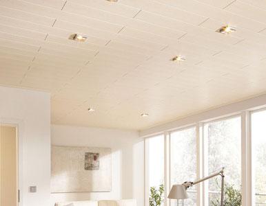 norbert glahe wand und deckenpaneele. Black Bedroom Furniture Sets. Home Design Ideas